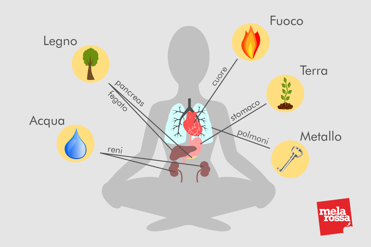 tai chi: i 5 elementi