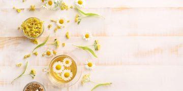 camomila: che cos'è, benefici e usi per bellezza e salute