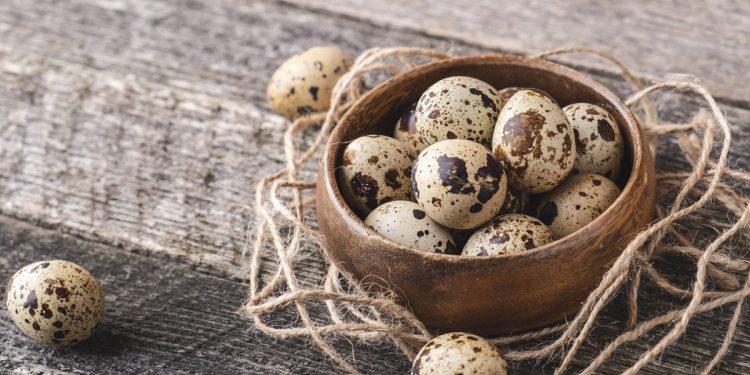Uova di quaglia: l'idea da provare per i tuoi menù di Natale