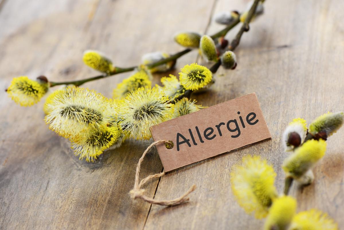 bimbi e allergia