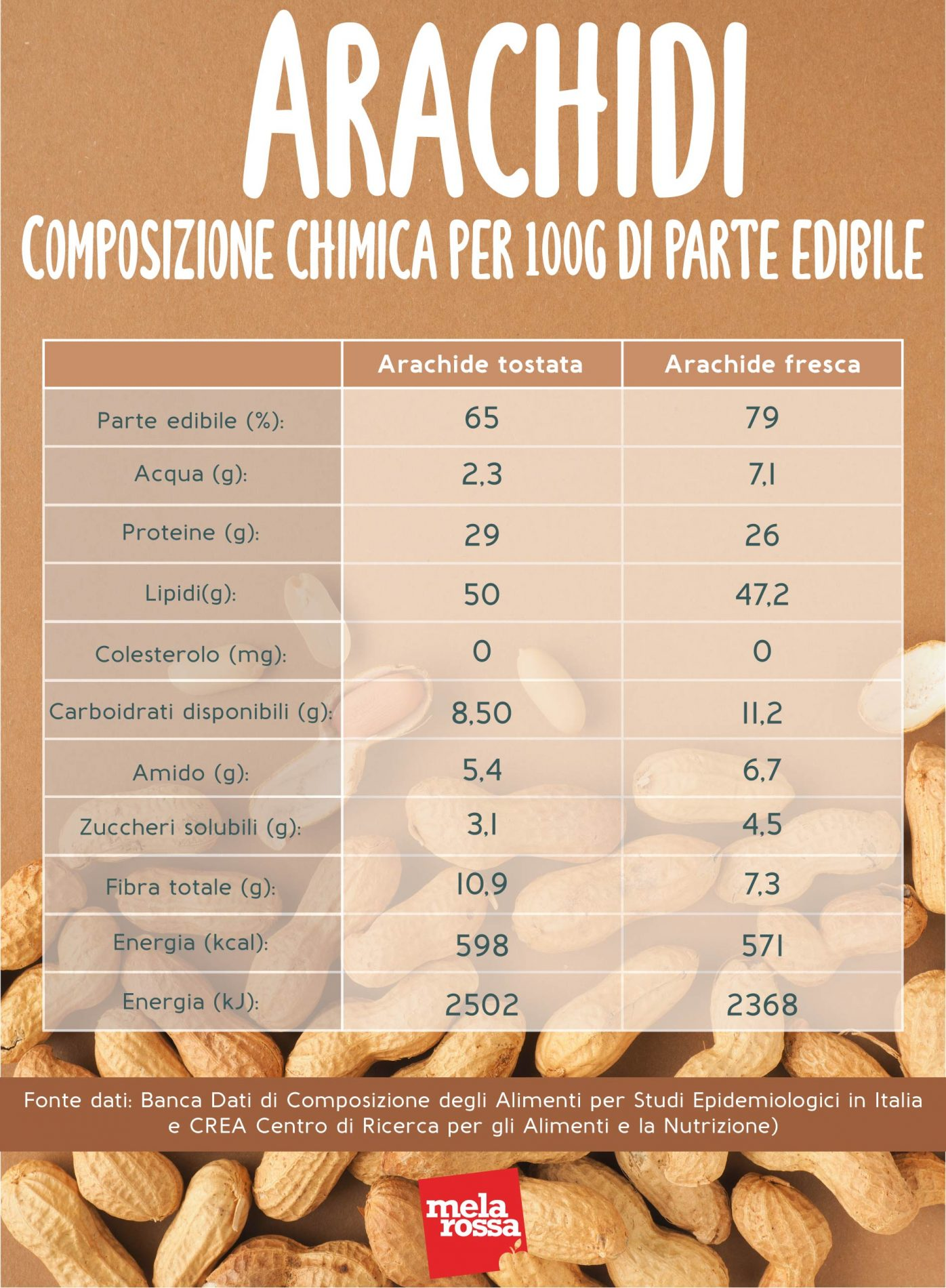 arachidi freschi e tostati: composizione chimica