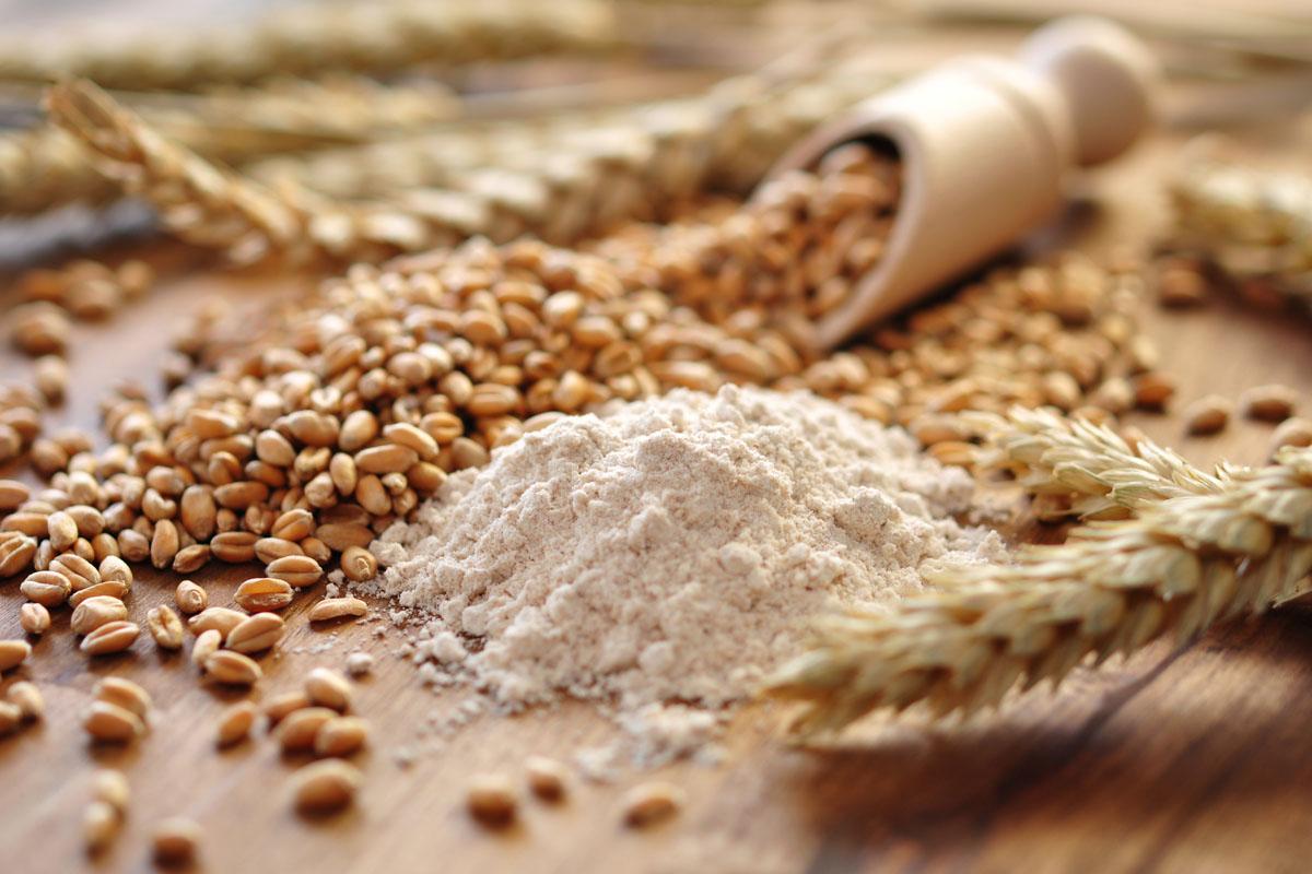 Cereali proprietà nutrizionali