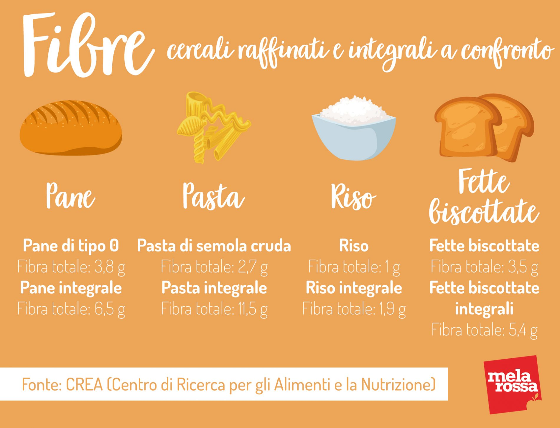 Cereali raffinati e integrali: contenuto di fibre