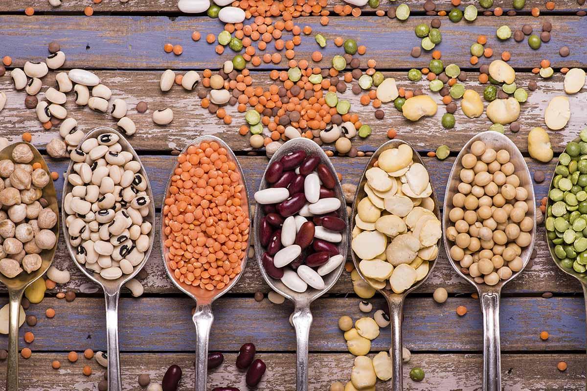 importanza dei carboidrati a dieta