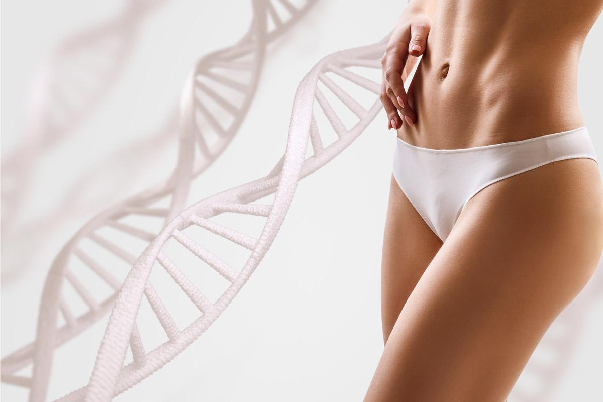 dieta sirt gene magro