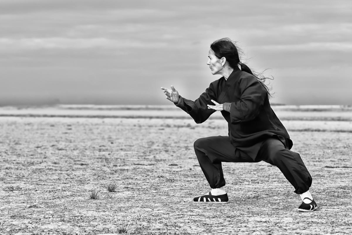 Kung fu e tai chi