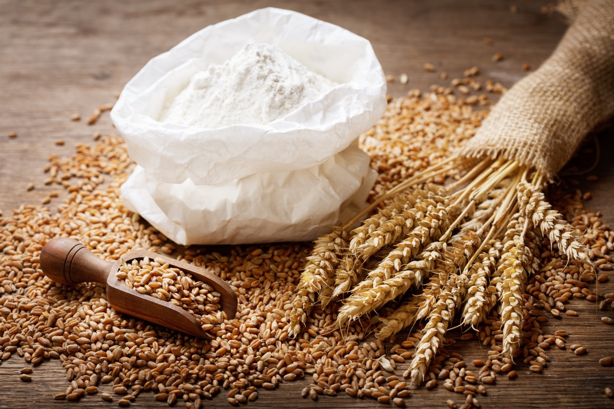 frumento: cos'è, benefici, controindicazioni, usi in cucina