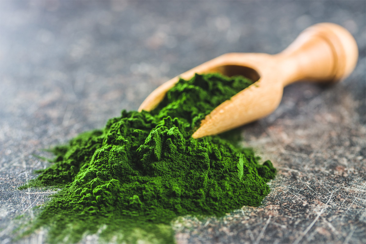 integratori alimentari alghe
