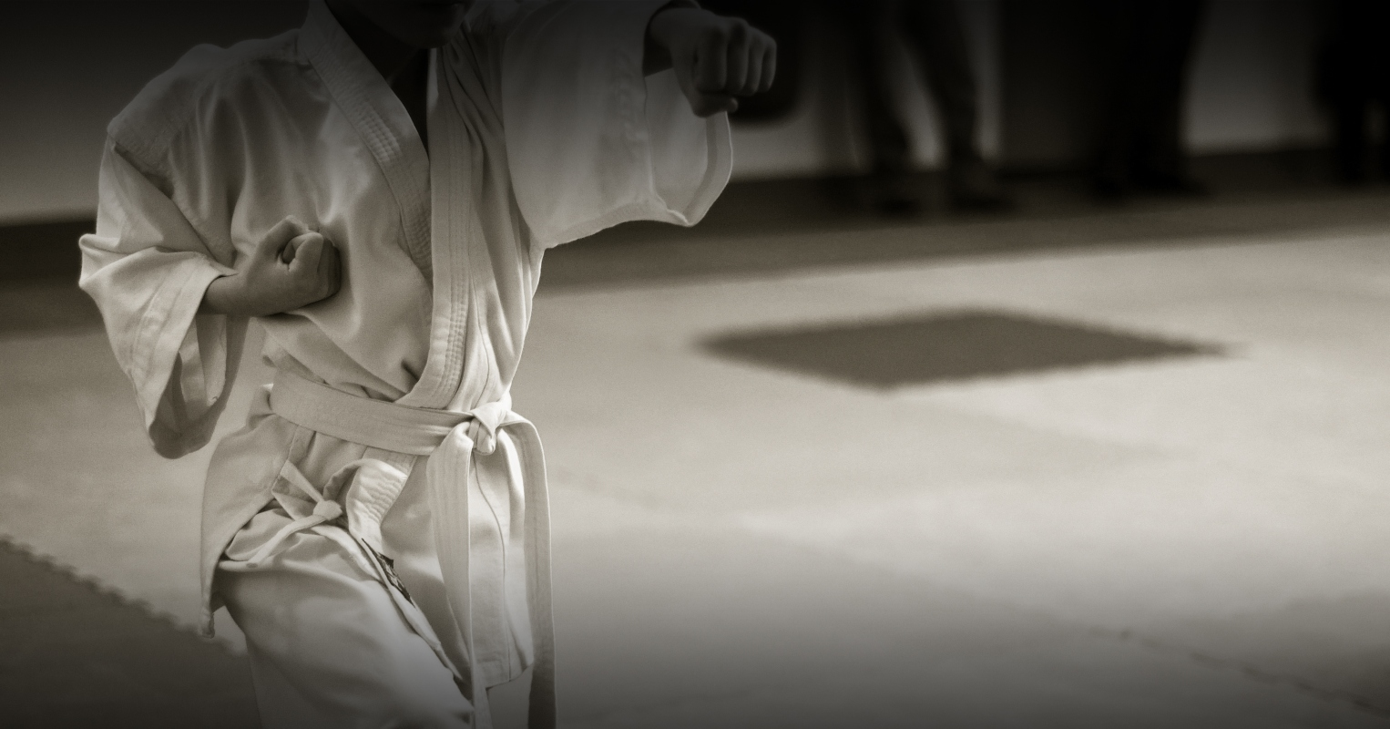allenamento karate