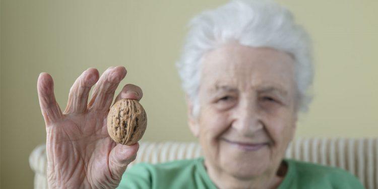 Le noci possono rallentare il declino cognitivo negli anziani a rischio