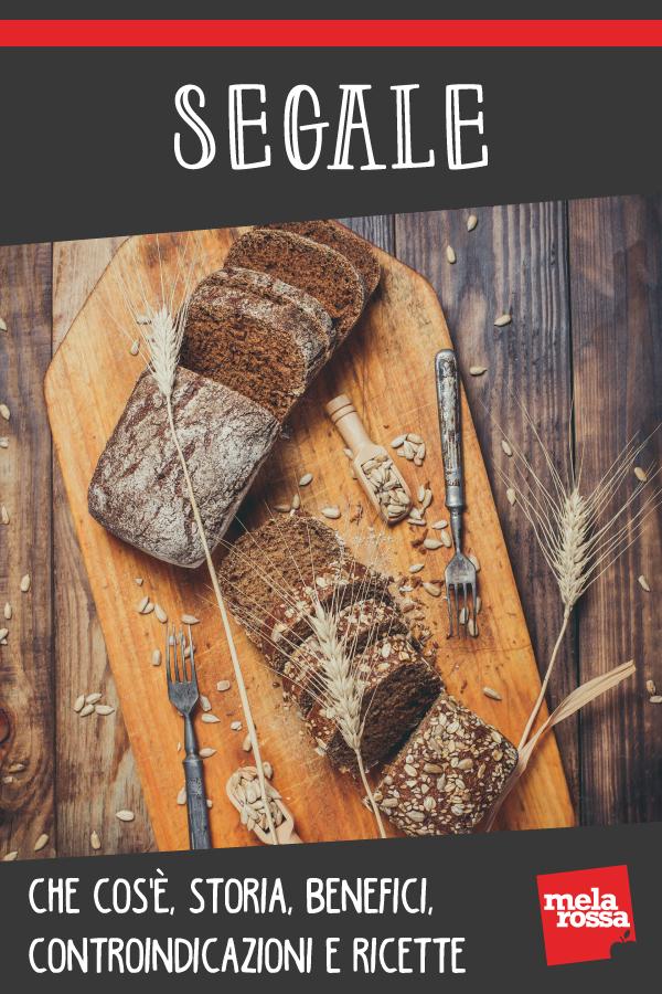 segale: che cos'è, ricette, benefici e controindicazioni