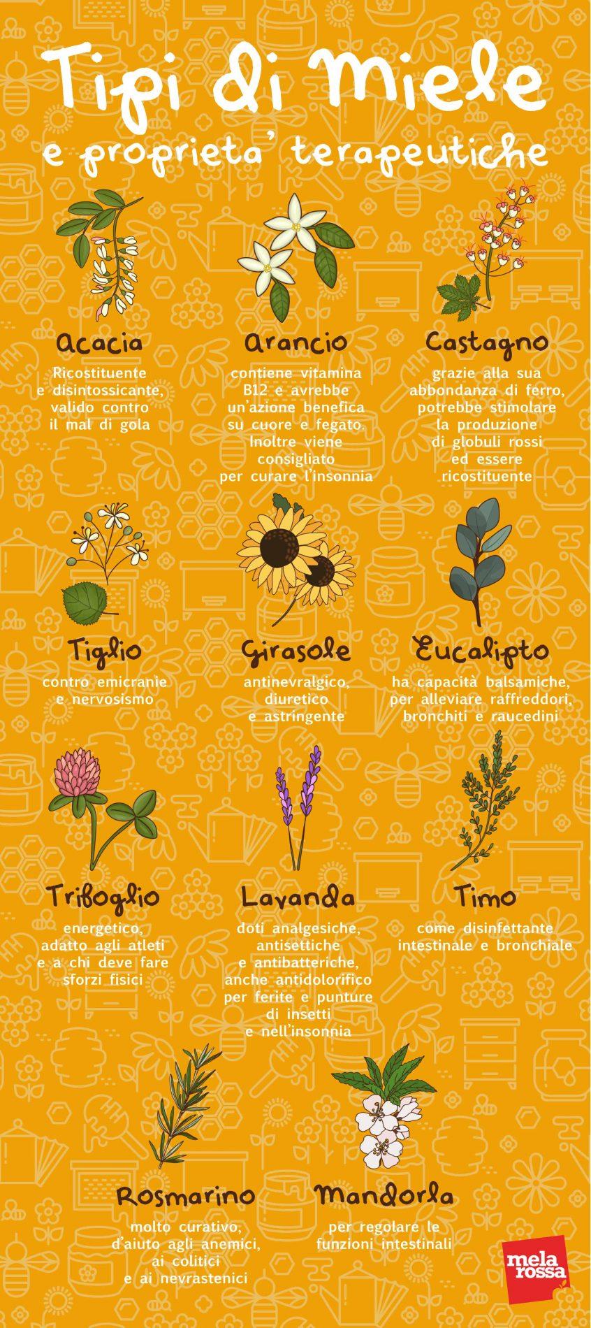 tipi di miele e proprietà terapeutiche