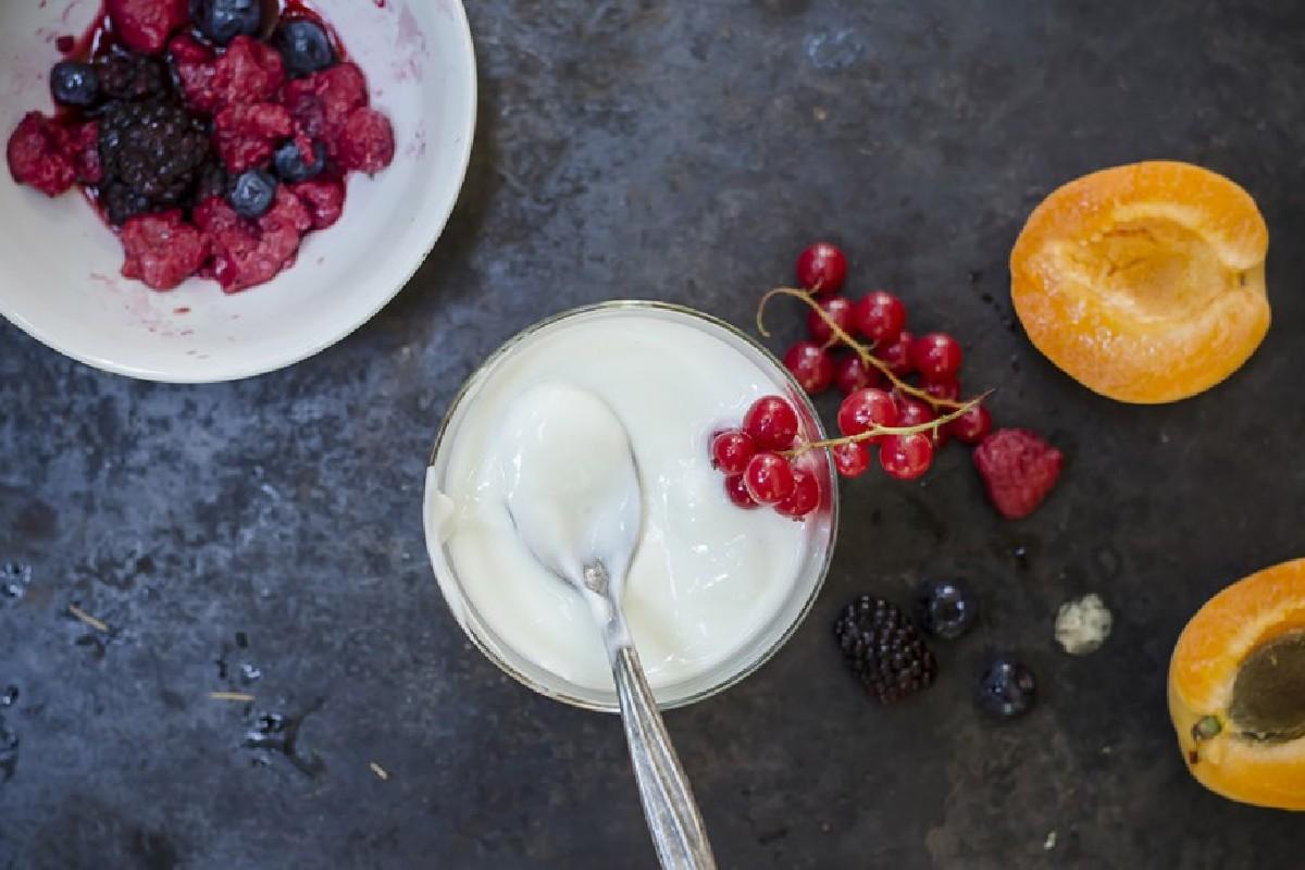 yogurt di soia fatto in casa