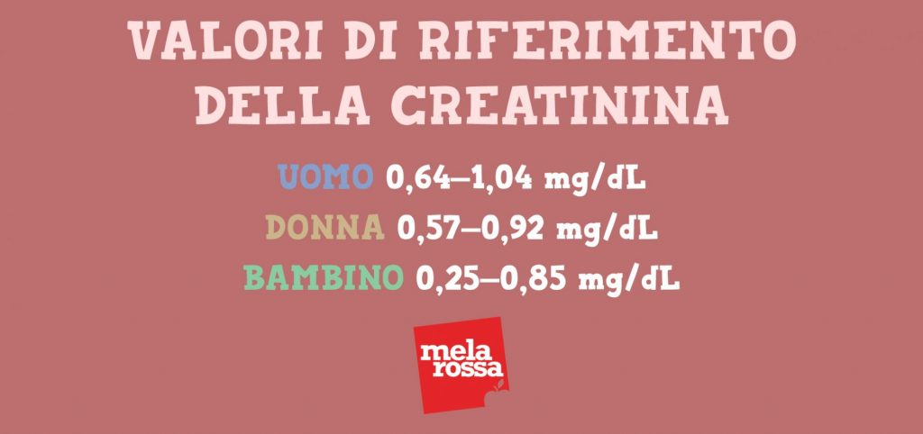 analisi del sangue:valori di riferimento per la creatinina