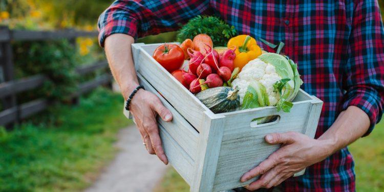 Mangiare bene fin da giovani migliora la fertilità maschile