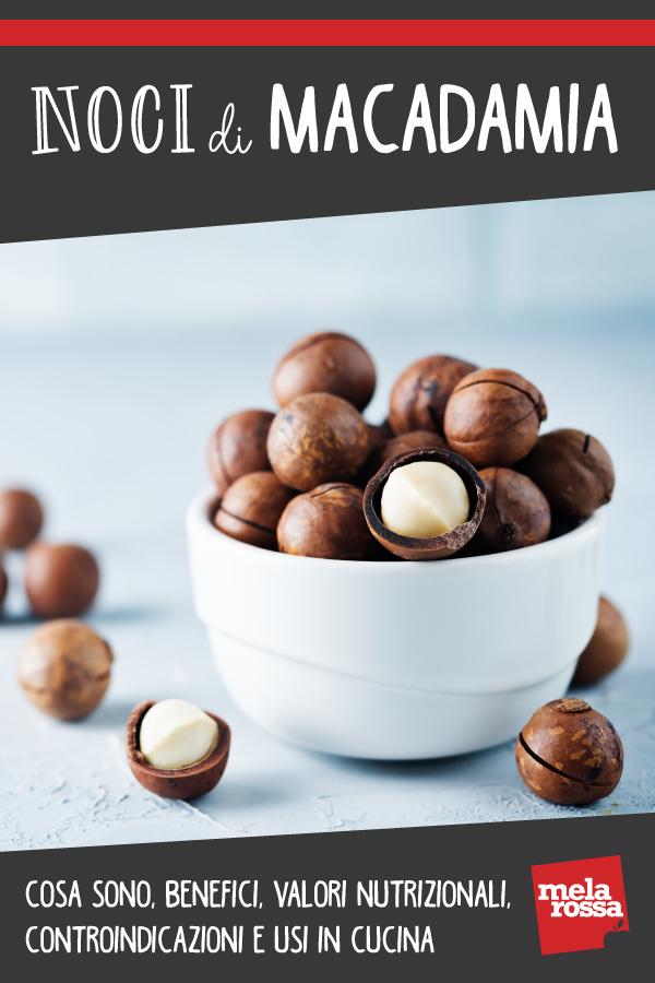 noci di macadamia: storia, benefici, valori nutrizionali e usi in cucina