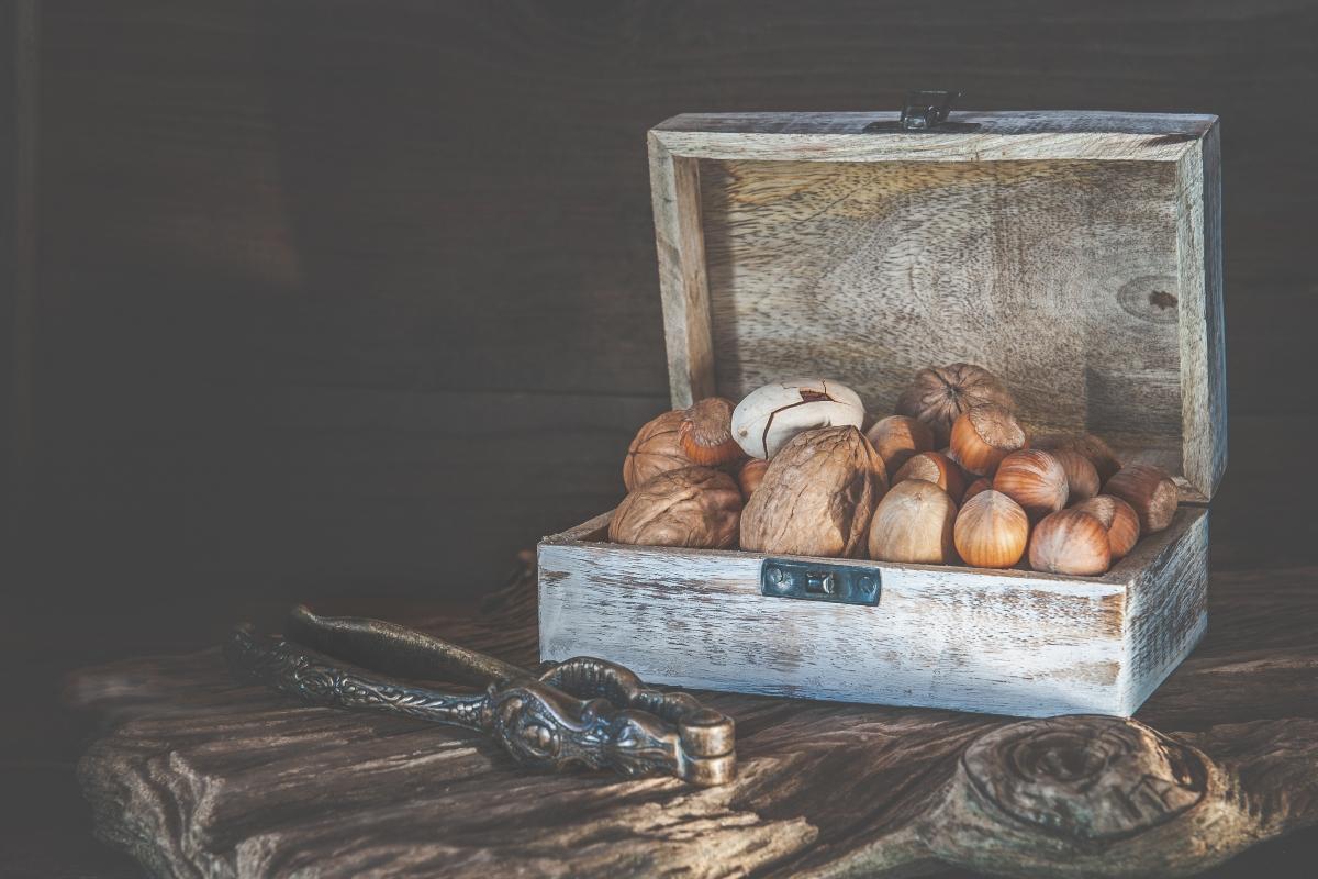 noci di macadamia: varietà