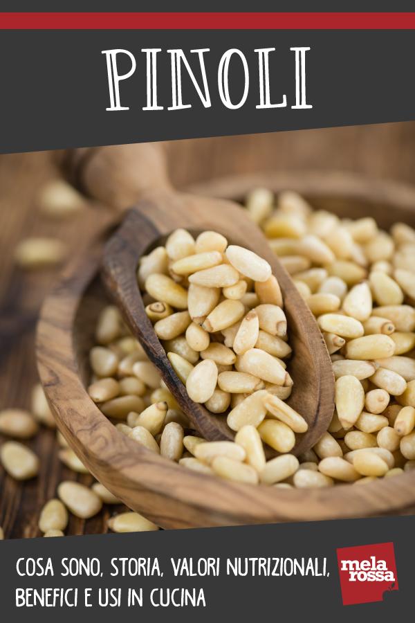 pinoli: storia, valori nutrizionali, benefici e usi in cucina