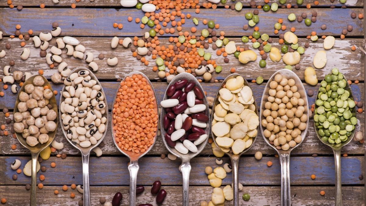 cicerchia: valori nutrizionali