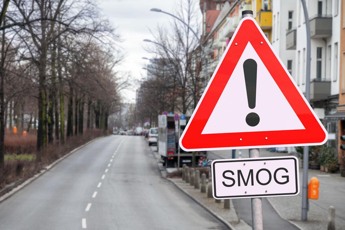 inquinamento atmosferico altera composizione microbiota intestinale