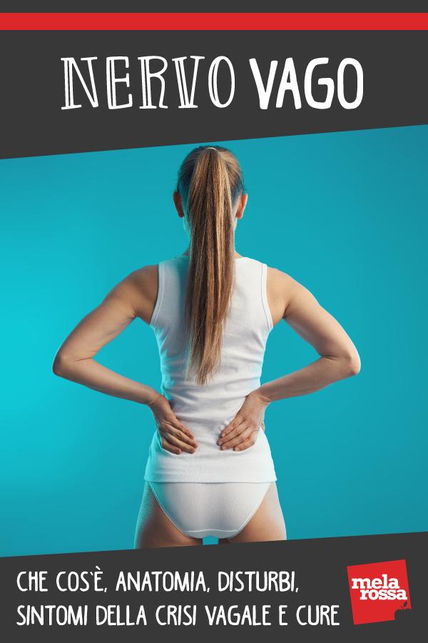 nervo vago: anatomia, disturbi, cause e cure