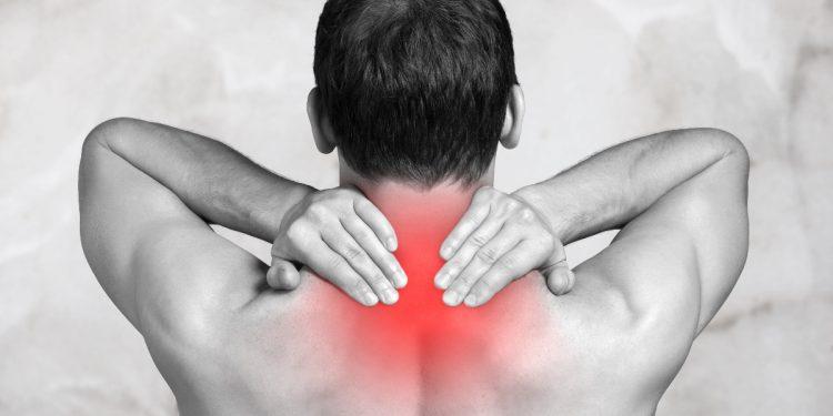 nervo vago: anatomia, funzione, sintomi e disturbi, cure