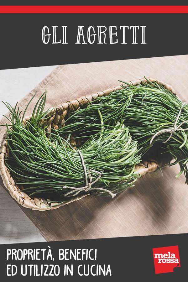 agretti: propreità benefici, valori nutrizionali e usi in cucina