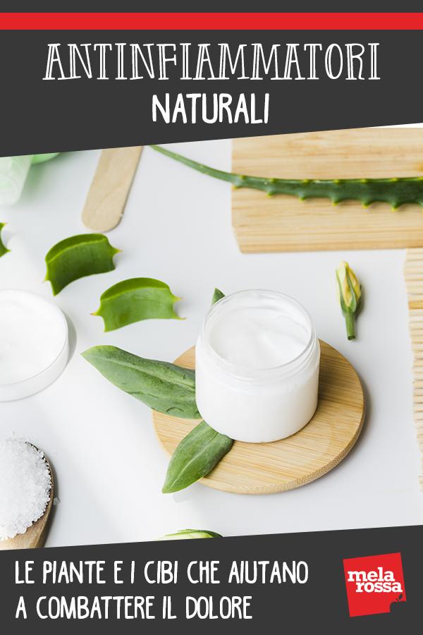 antinfiammatori naturali: cibi e  erbe per dare sollievo
