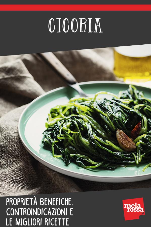 cicoria: benefici, valori e usi in cucina