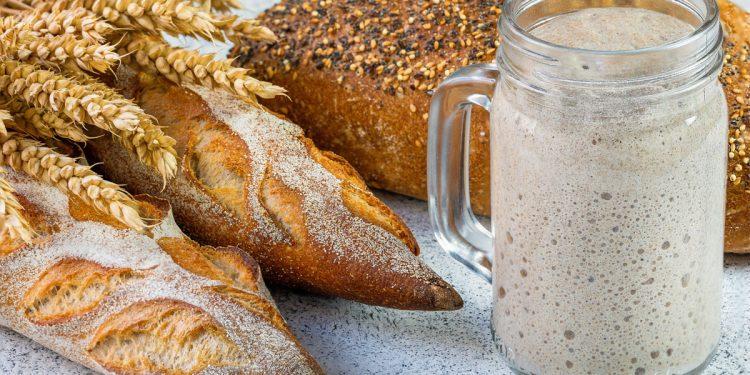 Pane, piadina, focaccia: 3 ricette con il lievito madre