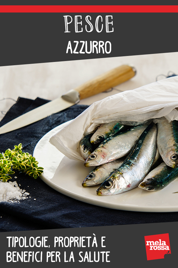 pesce azzurro: cos'è, benefici e ricette