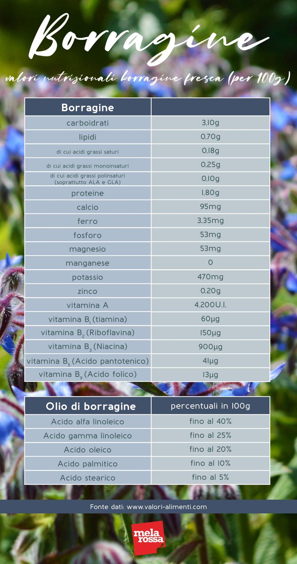 borragine: valori nutrizionali