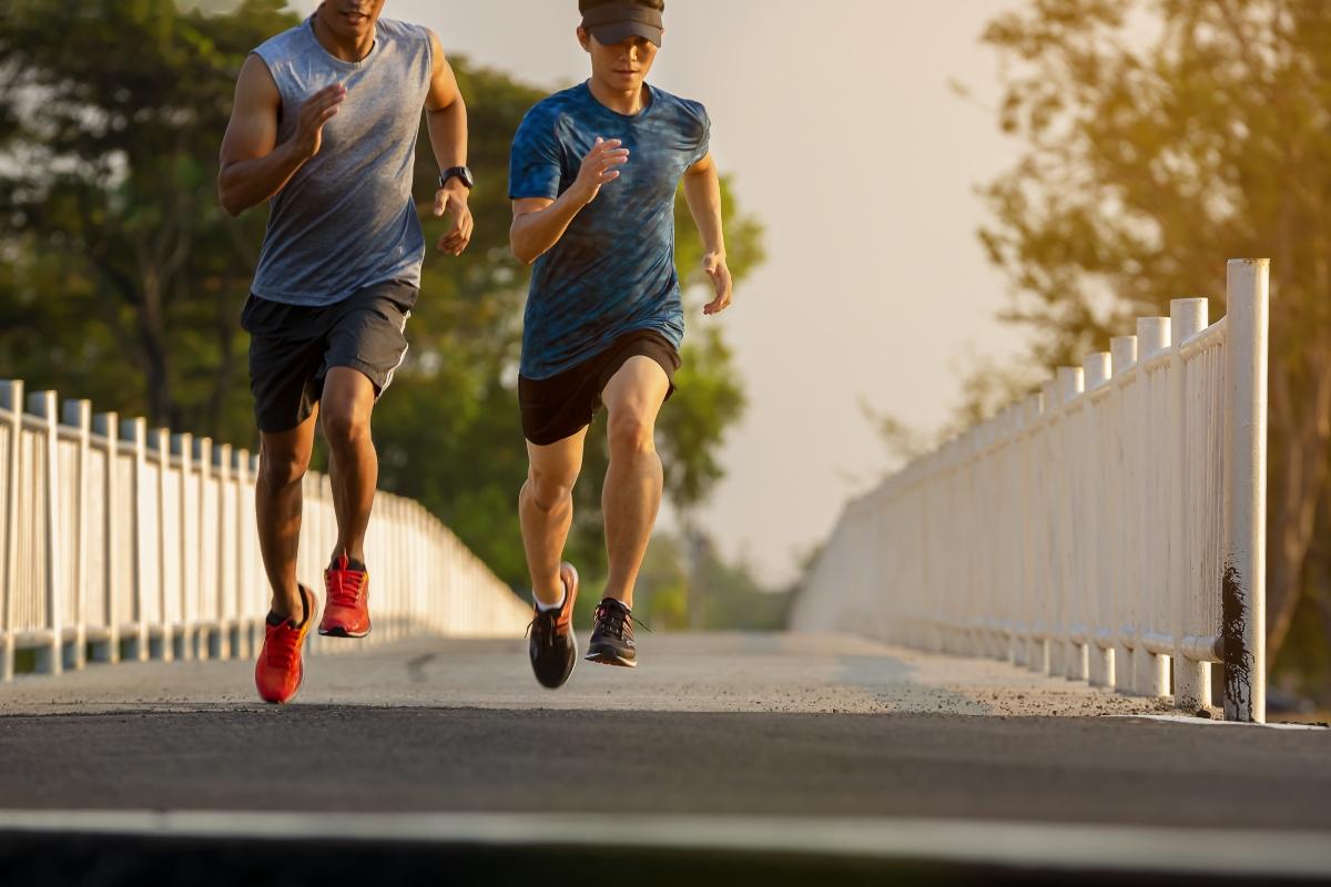 Muscoli allenati possono rafforzare il nostro sistema immunitario