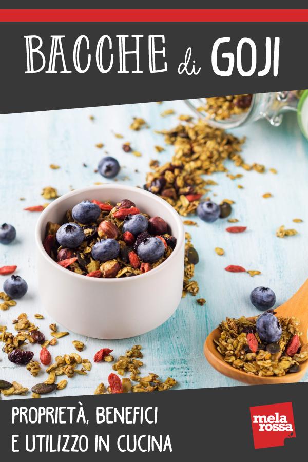 bacche di goji: cosa sono, benefici, proprietà, controindicazioni e usi in cucina