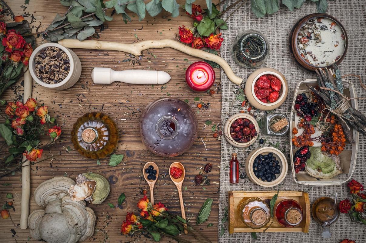 fitoterapia: co'sè, cosa cura, ricette e pericoli