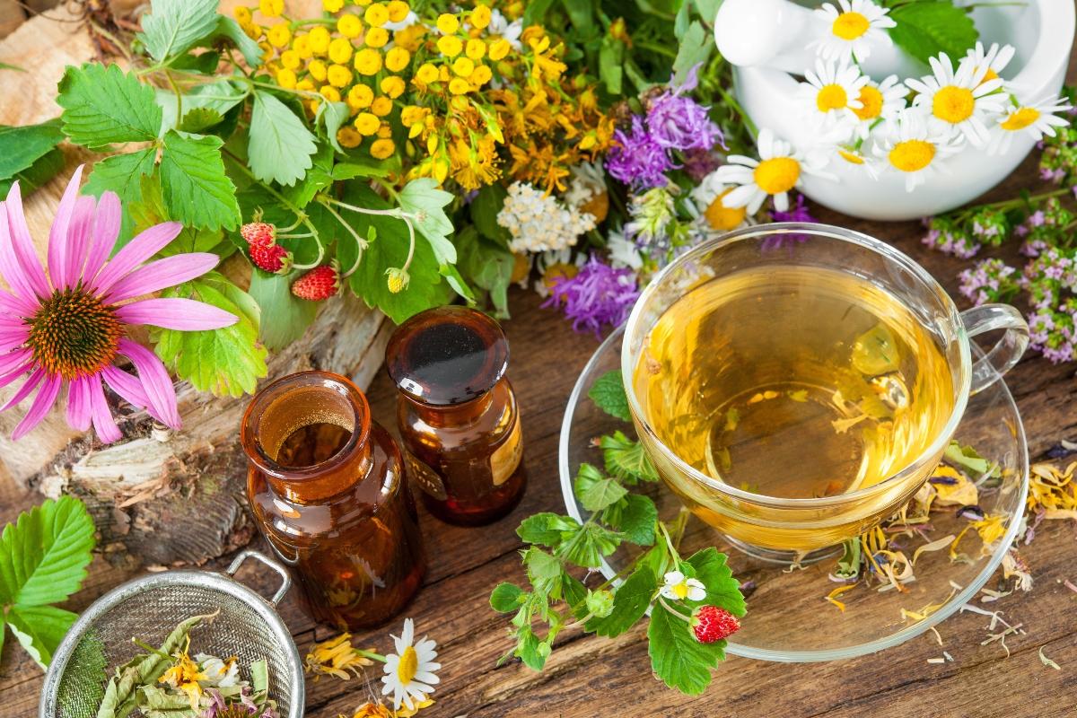 fitoterapia: preparati casalinghi