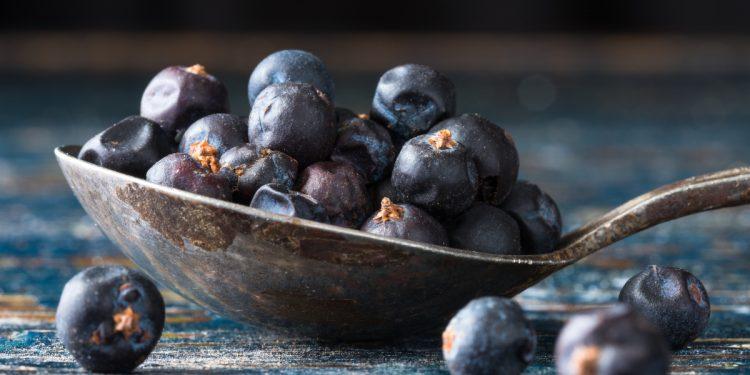 ginepro: cos'è, botanica, benefici, valori nutrizionali e ricette