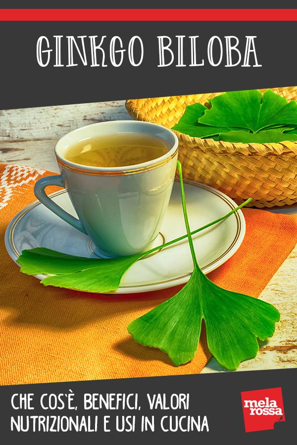 Ginkgo biloba: benefici e usi in cucina