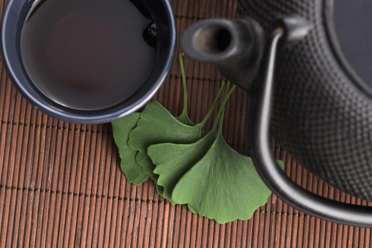 ginkgo biloba: proprietà medicinali