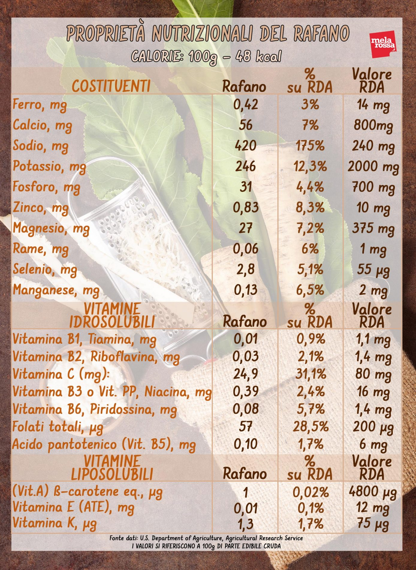 rafano: valori nutrizionali