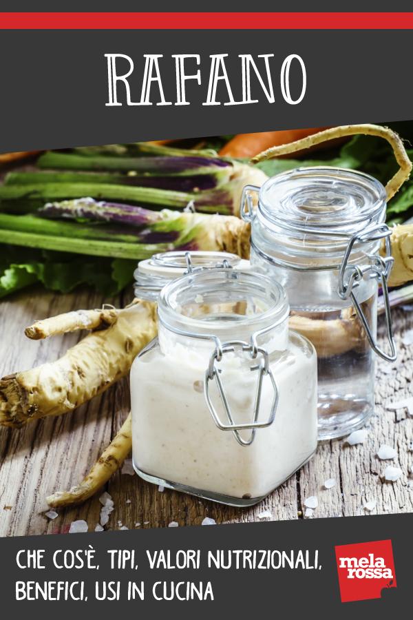 Rafano: che cos'è, benefici, valori nutrizionali e usi in cucina