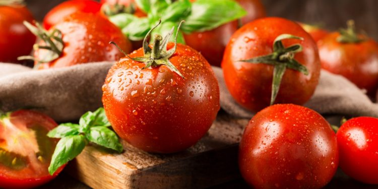 Ricette pomodori