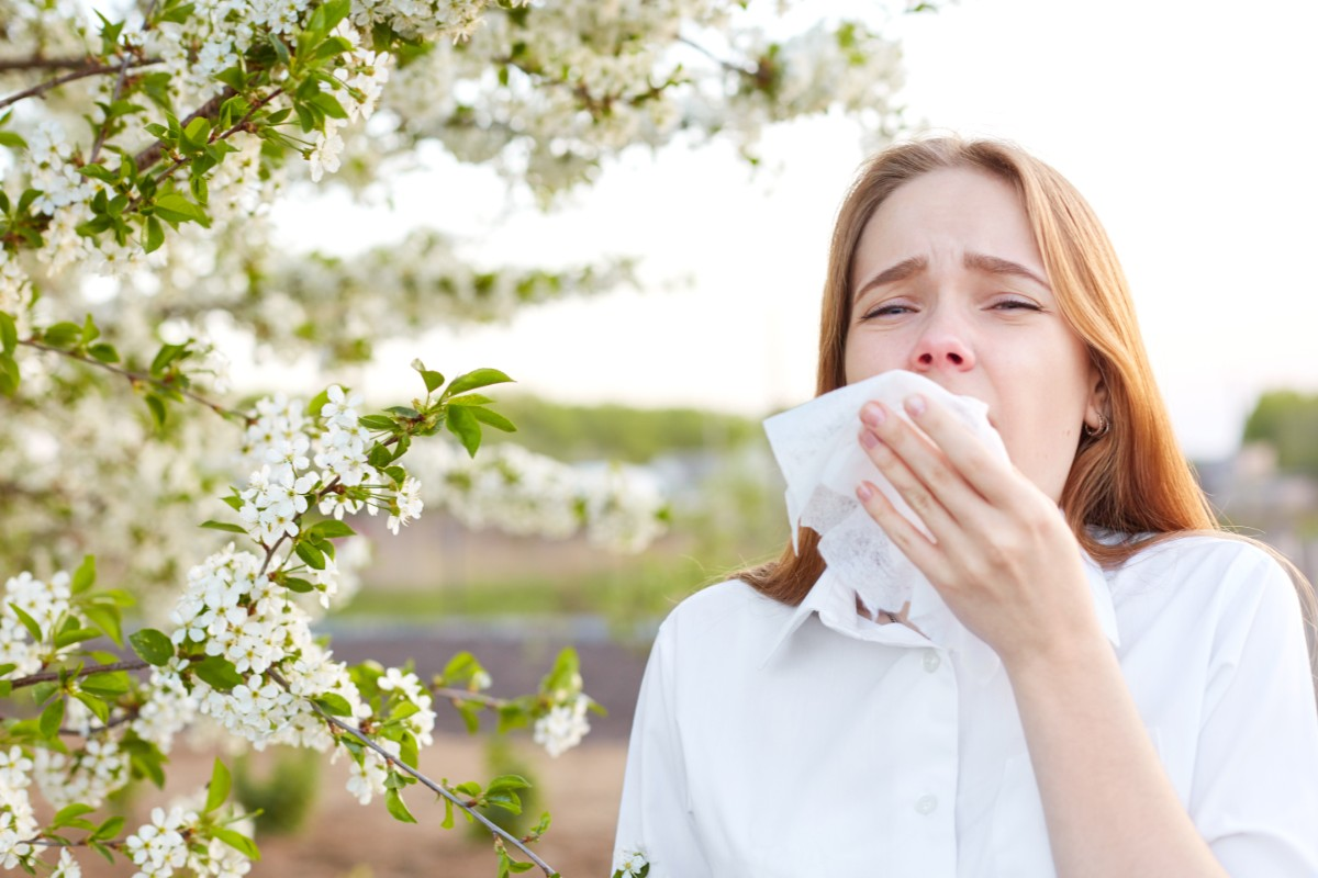 istamina allergie