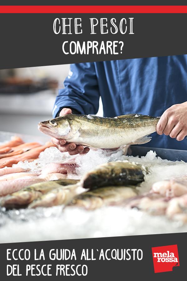 guida acquisto pesce fresco