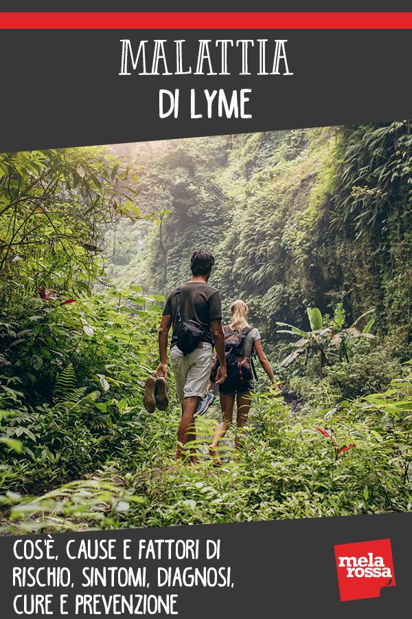 malattia di Lyme: cos'è, cause, sintomi cure e prevenzione