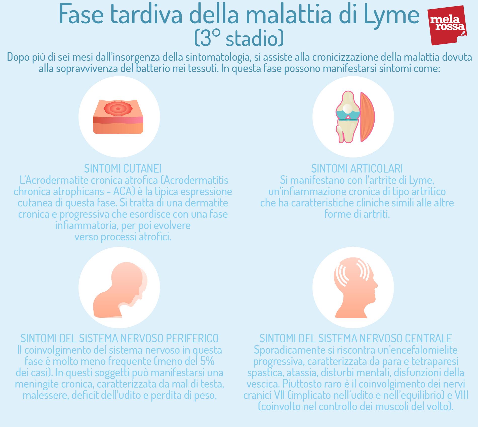 malattia di Lyme. fase tardiva