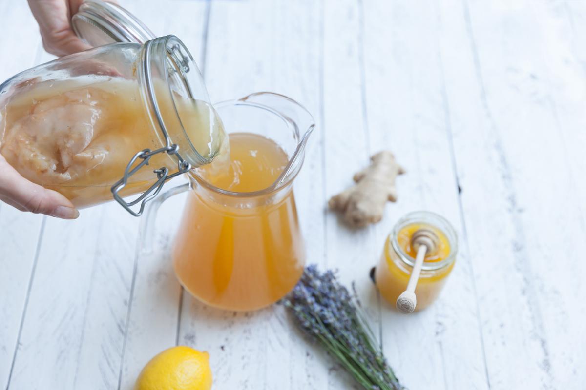 il tè kombucha : la ricetta