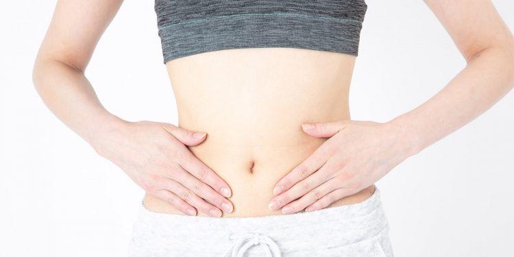 microbiota intestinale e sistema immunitario
