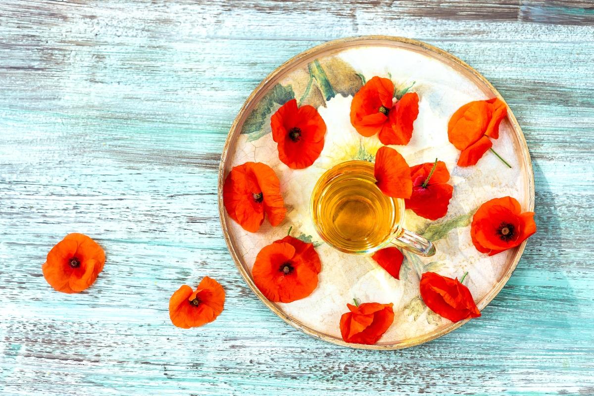 papavero: benefici, valori nutrizionali e usi in cucina
