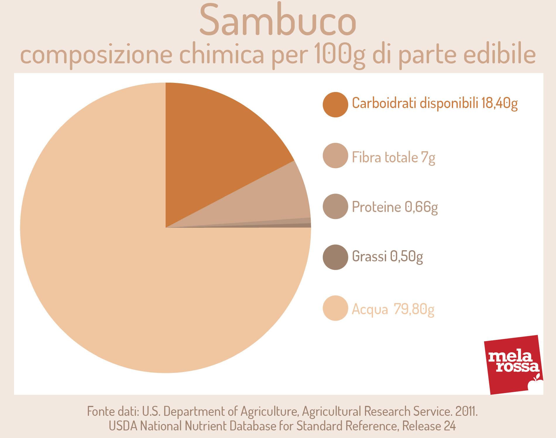 Sambuco: composizione chimica